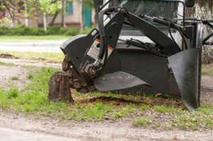 Milton stump grinding cost